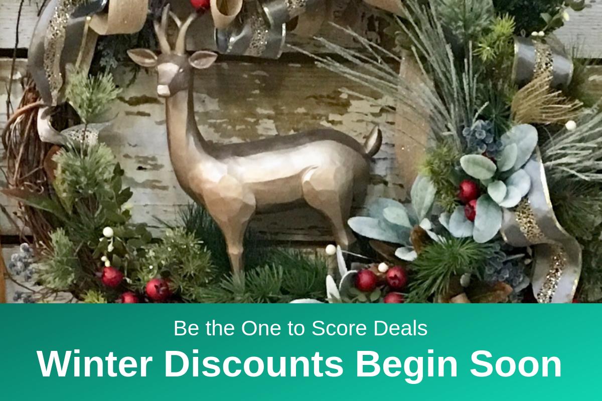 winter deals RD